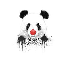 Clown panda Photographic Print