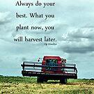 June Harvest by Glenna Walker