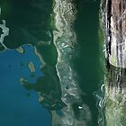 Pier Pressure by Barbara Burkhardt