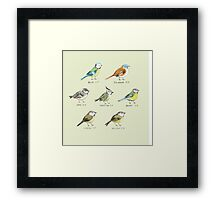 The Tit Family Framed Print