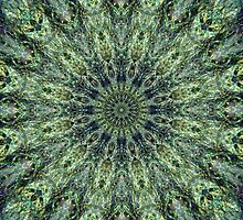 Fuchsite Magic Mandala by haymelter
