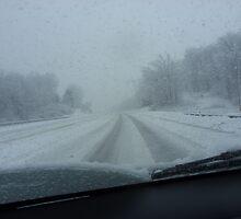 Snowy road by rosincore