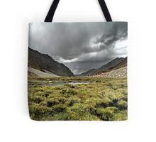 nubra grasslands. ladakh, north india Tote Bag