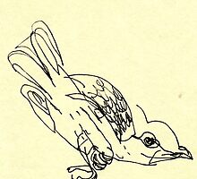 blind birdee 3 by likefleetwood