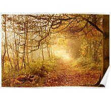 Autumn Woodland Poster