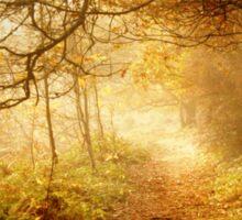 Autumn Woodland Sticker
