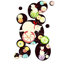 CandyCats Photographic Print