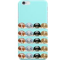 Australian Shepherd Puppies all 4 colors iPhone Case/Skin