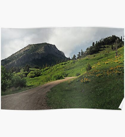 Beaver/Willow Creek Road, west of Augusta, Montana Poster