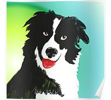 A Border Collie Poster