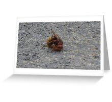 A dying hornet n°2 Greeting Card