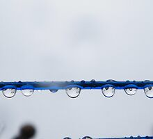 droplets on clothes line  by mandyemblow