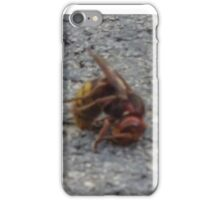 A dying hornet n°2 iPhone Case/Skin