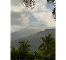 the tropical zone of the sierra madre - zona tropical de sierra madre Photographic Print