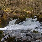 Tarn Beck in the Duddon Valley by Jamie  Green