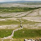 Burren Wall 2 by John Quinn