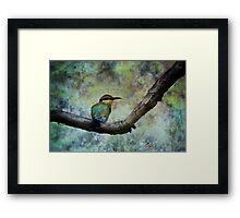 Rainbow bee-eater.  Framed Print