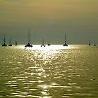Fannie Bay by Lynette Higgs