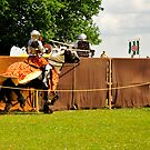 Knights Clash: Jousting by DonDavisUK