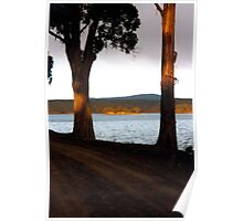 Sunset in the trees Poster