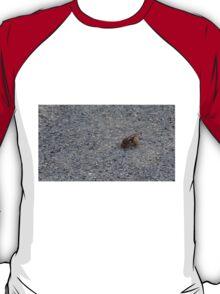 A dying hornet n°1 T-Shirt