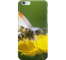 Orange Tip on Buttercup iPhone Case/Skin