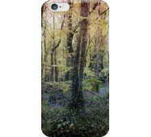 The blue hour. iPhone Case/Skin