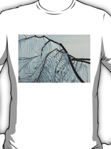 Intricate Ice Curtains T-Shirt