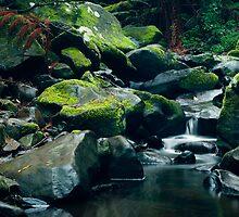 Erkskine River Cascades (First Shot) by Tony Lin