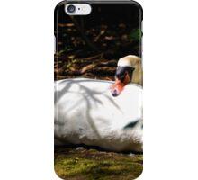 Shadowy Swan ............. iPhone Case/Skin