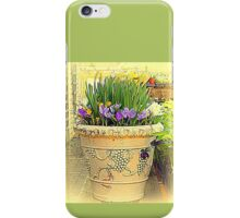 The flower pot iPhone Case/Skin