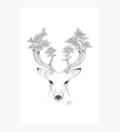 Tree Deer Photographic Print