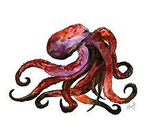 Octopus Illustration Photographic Print