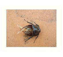 cockroach Art Print
