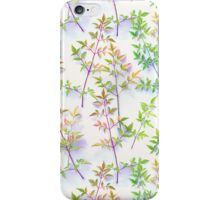 Leaves in the Light iPhone Case/Skin