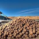 Steel Balls by GailD