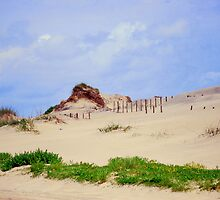 Cape Hatteras State Park Dunes by madman4