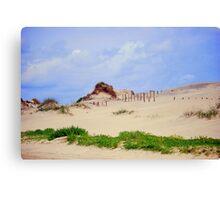 Cape Hatteras State Park Dunes Canvas Print