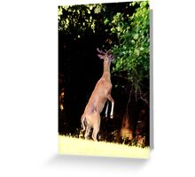 Stand In the Place Where You Live Greeting Card