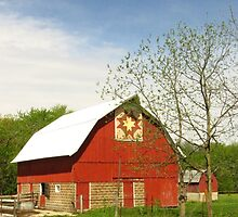 Springtime on the Farm by lorilee