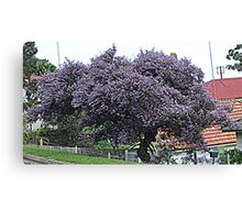 Purple Tree                                                                                                     from near me Canvas Print