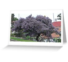Purple Tree                                                                                                     from near me Greeting Card