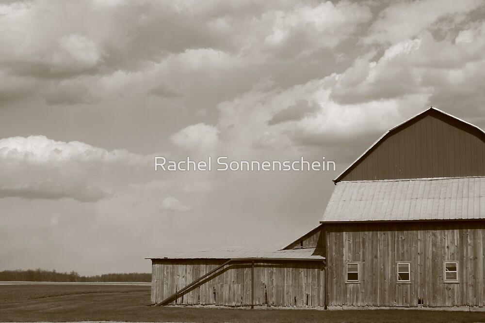 The Old Place by Rachel Sonnenschein
