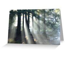 Pinhole Photography Greeting Card