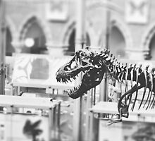 T-Rex by Indea Vanmerllin