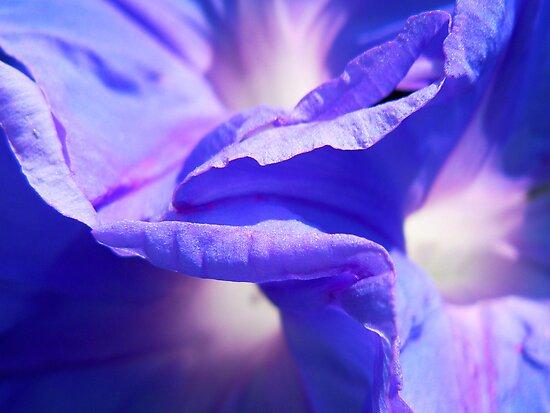 Floral Sea by Tamara Travers
