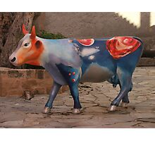 Mad Cow Photographic Print