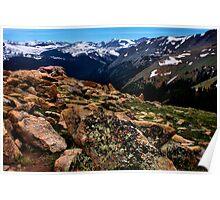 Alpine Tundra Poster