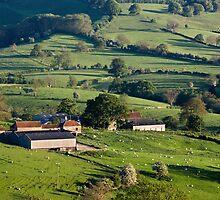 English Country Garden by Jon Tait
