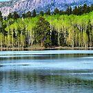 Yankee Lake 1 by Meltdown994